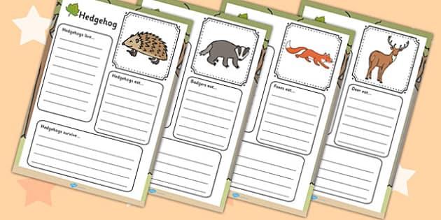 Woodland Animals Factfile Worksheet - Woodland, Wood, Animals