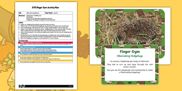 EYFS Hibernating Hedgehogs Finger Gym Plan and Resource Pack