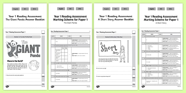 Year 1 Reading Assessment Term 2 Paper 1 - formative, summative, diagnostic, fiction, non-fiction
