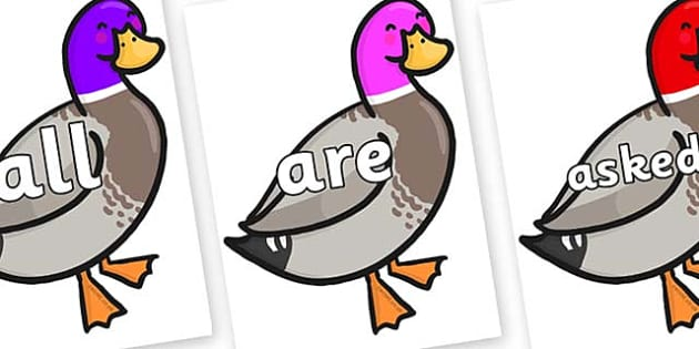 Tricky Words on Duck - Tricky words, DfES Letters and Sounds, Letters and sounds, display, words