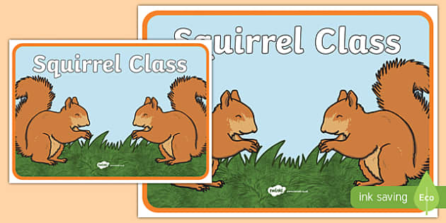 Squirrel Class Display Poster - squirrel, class, display poster, display, poster, squirrel class