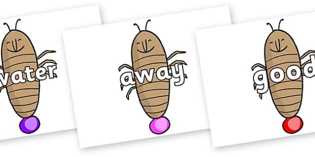 Next 200 Common Words on Glowworm to Support Teaching on James and the Giant Peach - Next 200 Common Words on  - DfES Letters and Sounds, Letters and Sounds, Letters and sounds words, Common words, 200 common words