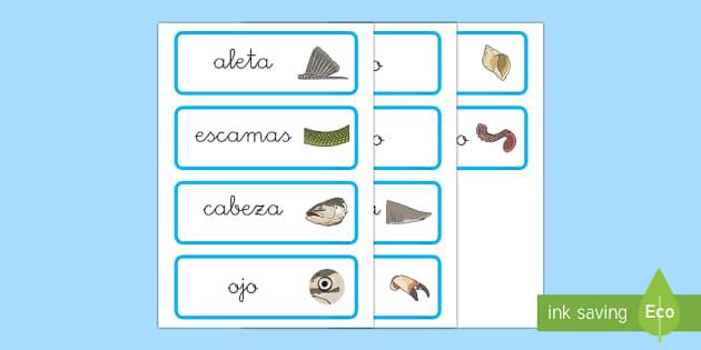 Bajo el mar Tarjetas de vocabulario-Spanish - Bajo el mar, proyecto, las partes del pez, las partes del cangrejo, las partes del pulpo,Spanish