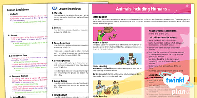 PlanIt - Science Year 1 - Animals Including Humans Planning Overview CfE - planit, science, year 1, animals including humans, planning overview, cfe
