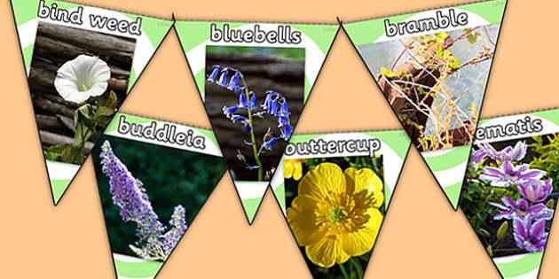 Flowers Photo Display Bunting - flowers, flowers bunting, flowers photo bunting, flower shop, garden centre, flower display bunting, plants, living things