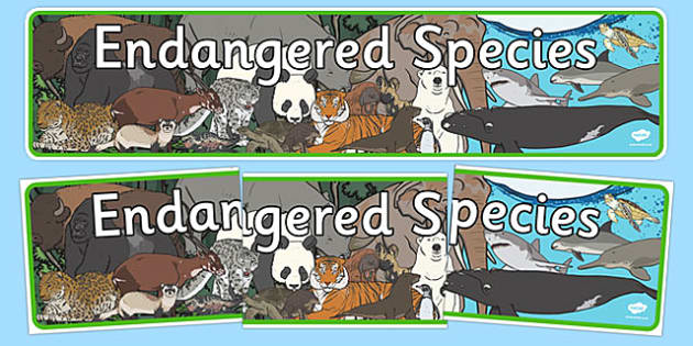 Endangered Species Display Banner - endangered species, display banner, display, banner