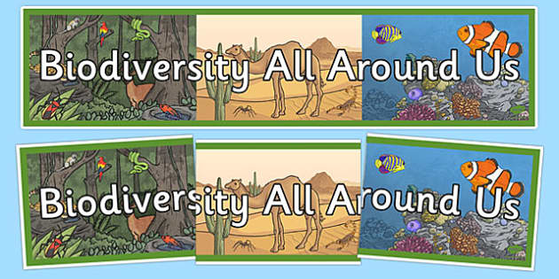 Biodiversity All Around Us Display Banner - Biodiversity, Green schools, environment, display, banner, green flag, nature
