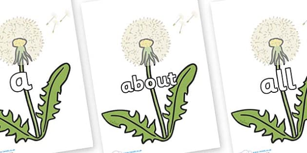 100 High Frequency Words on Dandelion Seeds - High frequency words, hfw, DfES Letters and Sounds, Letters and Sounds, display words