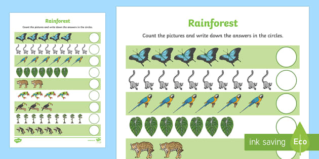 Rainforest Themed Counting Sheet - rainforest, counting, count, maths, mathematics, numeracy