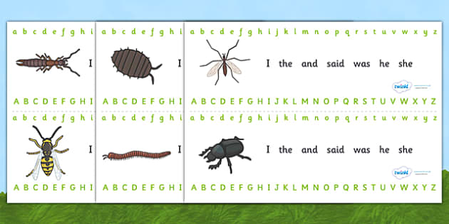 Minibeasts Alphabet Strips (Detailed Version) - Alphabet, Learning letters, Writing aid, Writing Area, minibeasts, spider, ladybird, slug, snail, butterfly