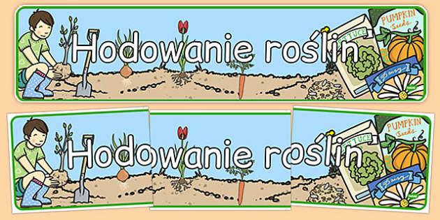 Banner na gazetkę Hodowla roślin po polsku - przyroda