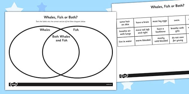 Whales and Fish Venn Diagram Activity Sheet - venn diagram, worksheet