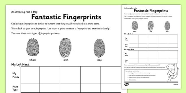 Fantastic Fingerprints Activity Sheet - finger prints, arch, loop, whirl, worksheet