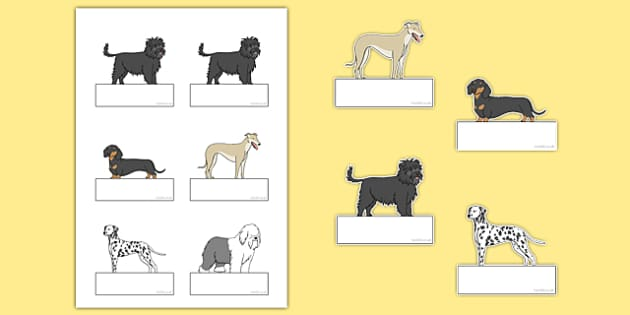 Dog Themed Editable Self Registration - Dame Lynley Dodd, hairy maclary, editable, self-registration