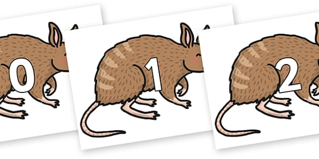 Numbers 0-50 on Bandicoot - 0-50, foundation stage numeracy, Number recognition, Number flashcards, counting, number frieze, Display numbers, number posters