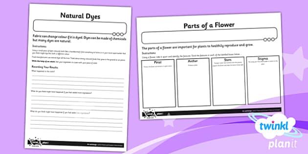PlanIt - Art UKS2 - Plants and Flowers Unit Home Learning Tasks