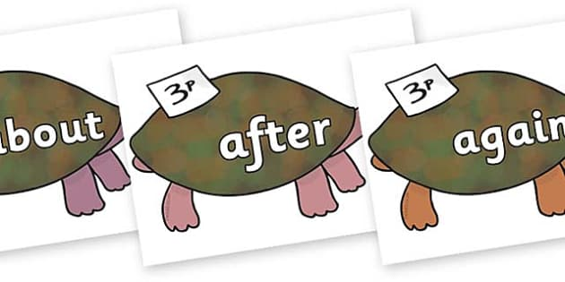 KS1 Keywords on Turtle to Support Teaching on The Great Pet Sale - KS1, CLL, Communication language and literacy, Display, Key words, high frequency words, foundation stage literacy, DfES Letters and Sounds, Letters and Sounds, spelling