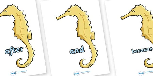 Connectives on Seahorses - Connectives, VCOP, connective resources, connectives display words, connective displays