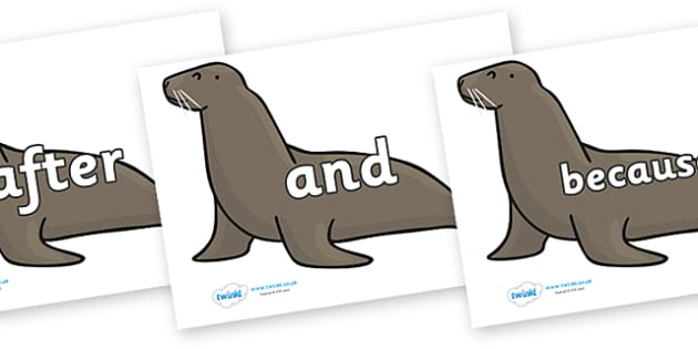 Connectives on Sealions - Connectives, VCOP, connective resources, connectives display words, connective displays