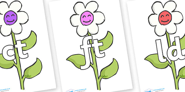 Final Letter Blends on Flowers - Final Letters, final letter, letter blend, letter blends, consonant, consonants, digraph, trigraph, literacy, alphabet, letters, foundation stage literacy