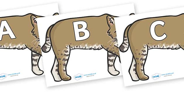 A-Z Alphabet on Bobcats - A-Z, A4, display, Alphabet frieze, Display letters, Letter posters, A-Z letters, Alphabet flashcards