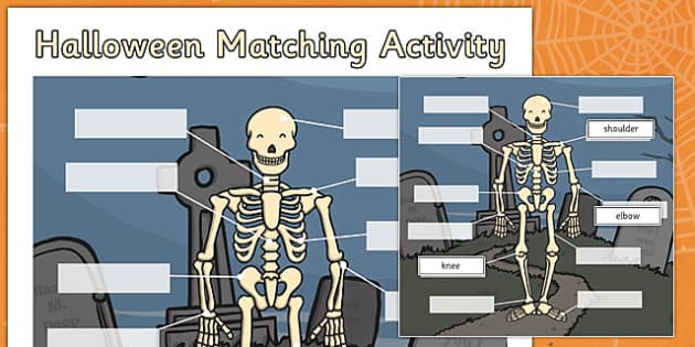 Halloween Matching Activity Sheet Skeleton - halloween, matching, activity, match, sheet, skeleton, worksheet