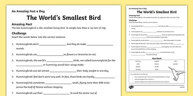 The World's Smallest Bird Activity Sheet, worksheet
