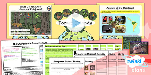 PlanIt - Science Year 2 - The Environment Lesson 4: Forest Friends Lesson Pack - planit, science, year 2, lesson 4