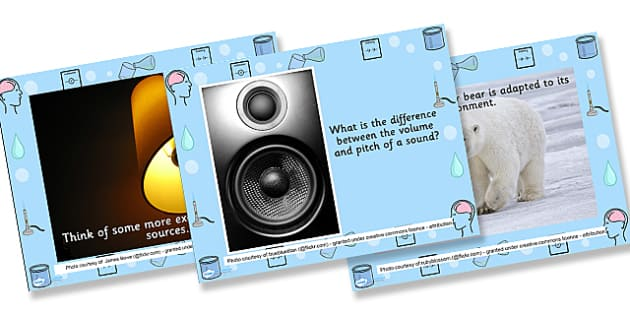 Science Starter Questions and Photo PowerPoint - ks2 science, science powerpoint, science questions, introduction to ks2 science, science photo powerpoint