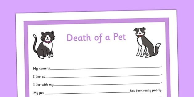 Social Situation Sheet Death of a Pet Primary - social story, sheet, death, pet, primary