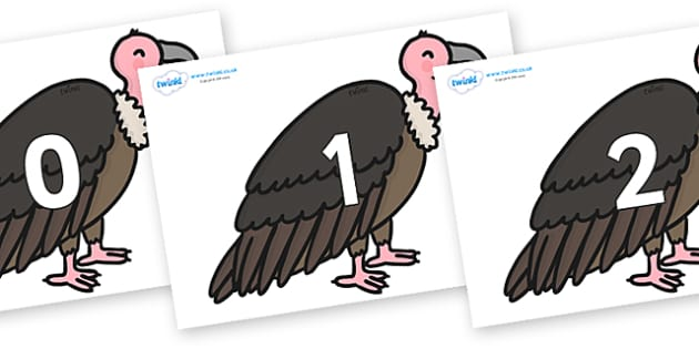 Numbers 0-50 on Vultures - 0-50, foundation stage numeracy, Number recognition, Number flashcards, counting, number frieze, Display numbers, number posters