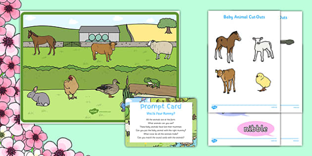 Who is Your Mummy? Interactive Poster - Spring, Animals, Growing, Farm