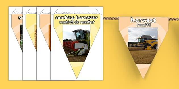 Harvest Photo Display Bunting Romanian Translation - romanian