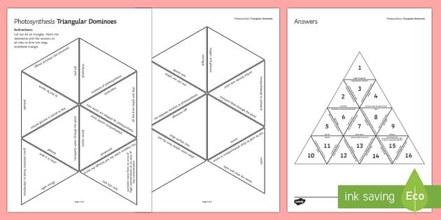 Photosynthesis Triangular Dominoes - Tarsia, Triangular Dominoes, Photosynthesis, Respiration, Plants, Starch, Glucose, Xylem, Phloem, Pa