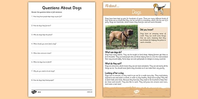 Dogs Reading Comprehension - Reading comprehension, dog, find, locate, read, comprehend, fact, title, fact file, information, question
