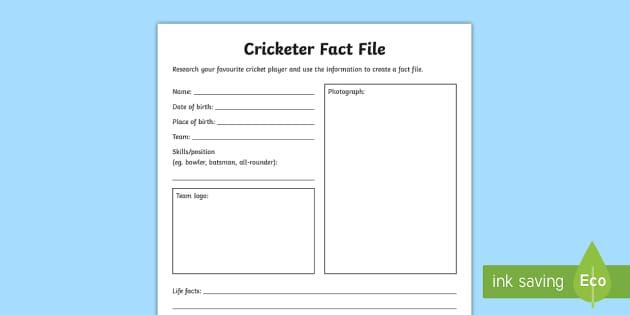 Cricketer Activity Sheet - Cricket,Australia, cricketers, pe, sport, summer sport, cricket,