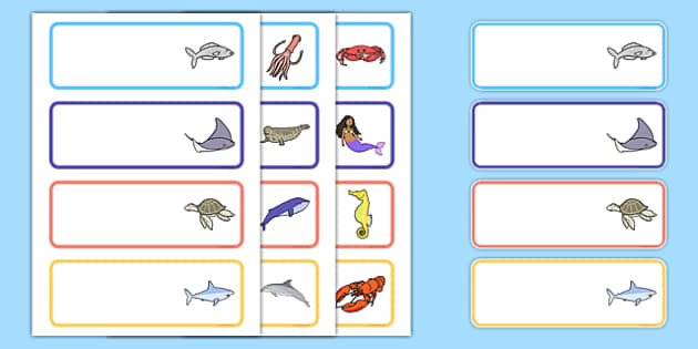 The Little Fish Editable Drawer Peg Name Labels - tiddler, drawers, trays, signs, labels, names, fish, under the sea, ocean, gratnell, edit, editable, own texxt