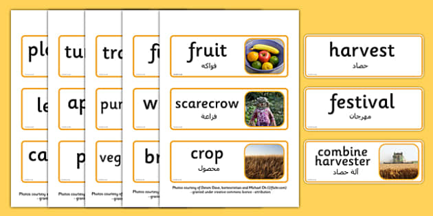 Harvest Topic Words Arabic Translation - arabic, harvest, topic, words