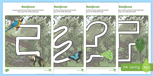 Rainforest Themed Pencil Control Path Activity Sheets - rainforest, pencil control path, pencil, control, path, activity