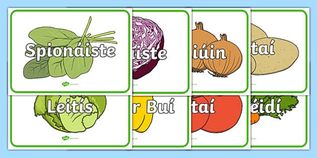 An t-Ollmhargadh The Supermarket Vegetables Irish Gaeilge Large Display Cut-Out Pack-Irish
