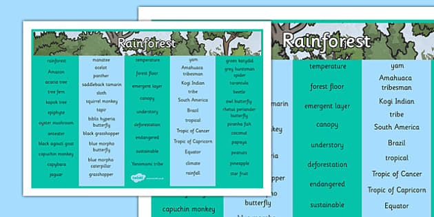 Rainforest Word Mat - rainforest, word mat, word, mat, jungle, humid, geography