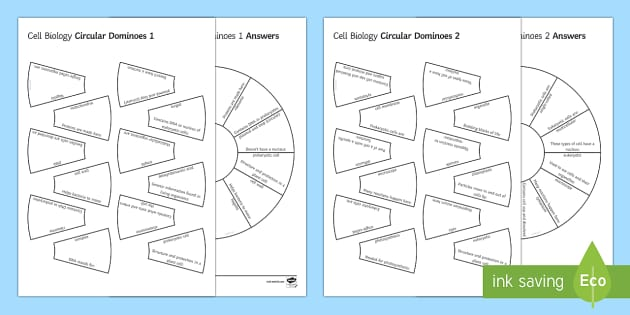 Cell Biology Circular Dominoes - Biology Week, Cells, Organelles, Tarsia, Eukaryote, Prokaryote, Nucleus