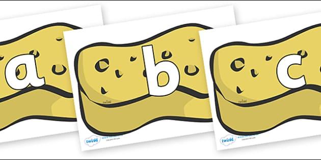 Phoneme Set on Sponges - Phoneme set, phonemes, phoneme, Letters and Sounds, DfES, display, Phase 1, Phase 2, Phase 3, Phase 5, Foundation, Literacy