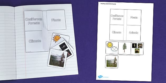 Living Things and their Habitats Coniferous Forest Flap Book