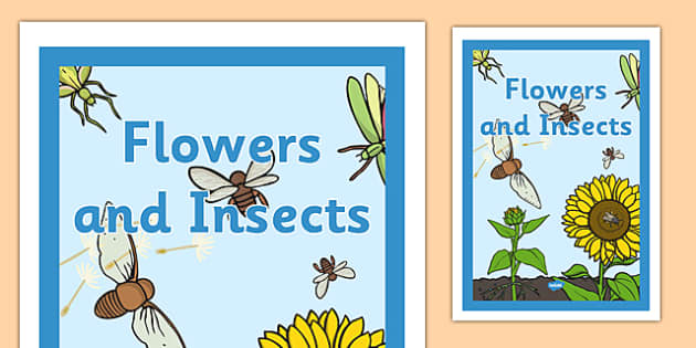 Flowers and Insects Book Cover - nature, science, plants, minibeasts, topic, front cover
