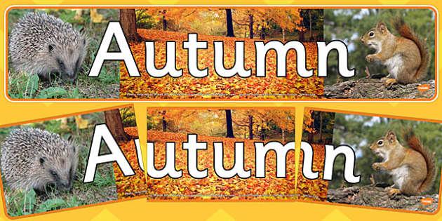Autumn Photo Display Banner - autumn, photo display banner, photo banner, display banner, banner,  banner for display, display photo, display, picture, photo