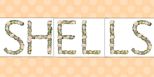 Shells Pebbles and Seaweed Display Lettering - display, header, title, sea, coast,