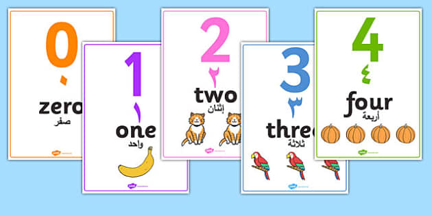 0 to 50 Number Word Image Posters Arabic Translation - maths, numeracy, visual aid, information, frequent, early years, ks1, key stage 1, display