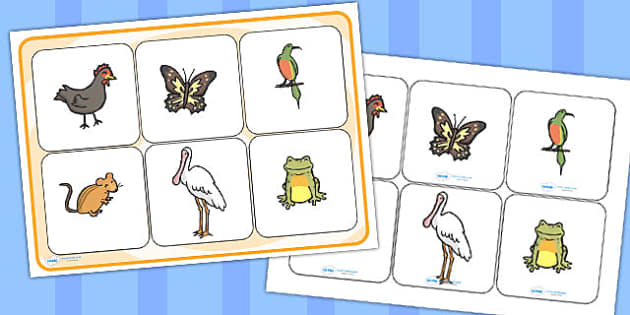African Hen Story Matching Cards and Board - match, game, games