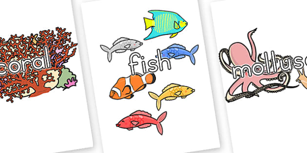 Great Barrier Reef Topic Words on Topic Images - australia, reef